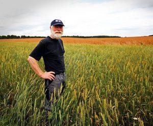La tecnología también influye en el cultivo de alimentos